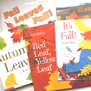 Favorite Picture Books for Fall | Roots & Boots