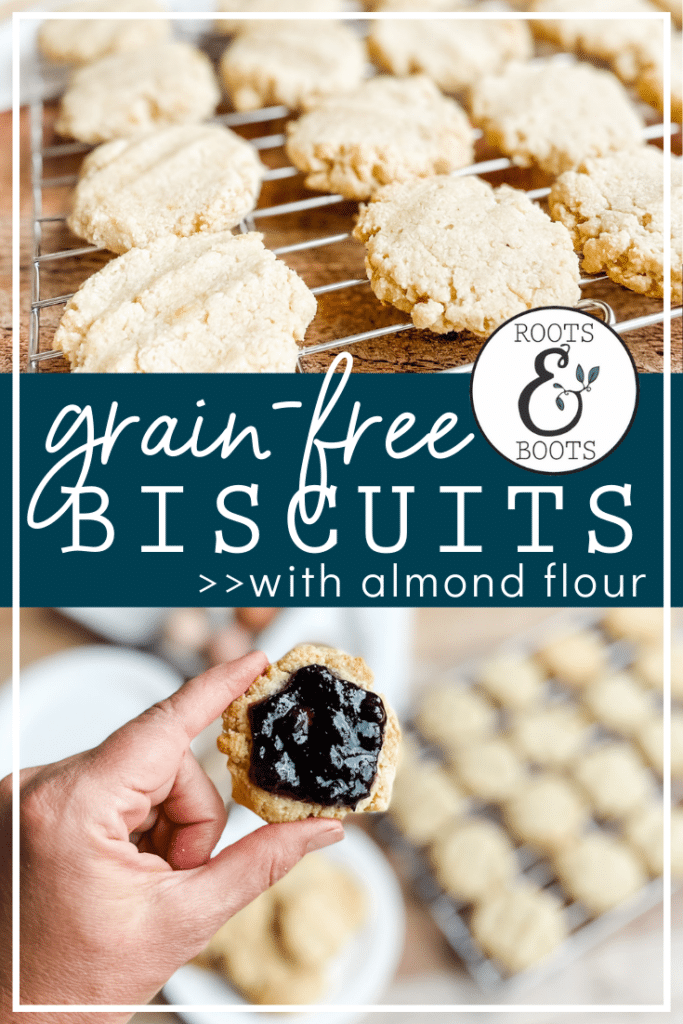 Almond Flour Biscuits   Roots & Boots