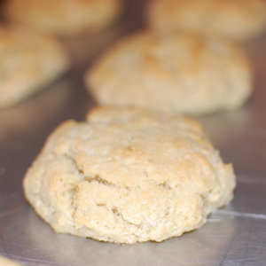 Almond Flour Biscuits | Yankee Homestead