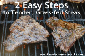 2 Easy Steps to Tender, Grass-fed Steaks