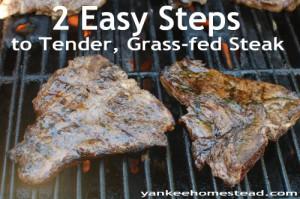 2 Easy Steps to Tender, Grass-fed Steaks
