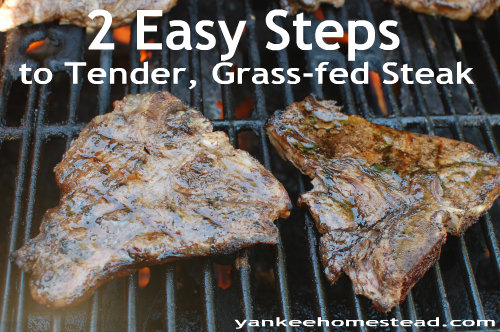 2 Easy Steps to Tender, Grass-fed Steak