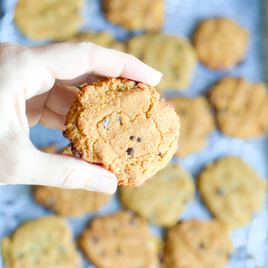 Pumpkin Chocolate Cookies | Roots & Boots