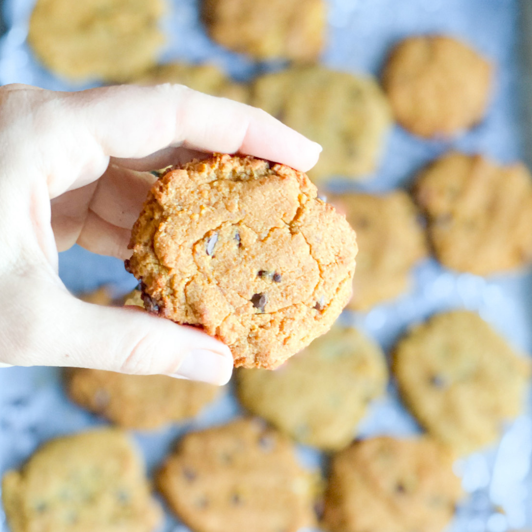 Pumpkin Chocolate Cookies | Roots & Boots