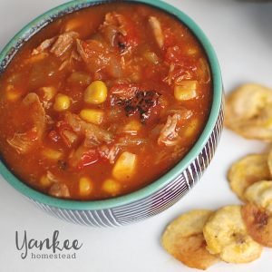 Chicken Tortilla Soup {Crockpot} | Yankee Homestead