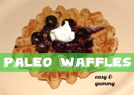 Gluten-free, Paleo Waffles {and a cookbook recommendation}