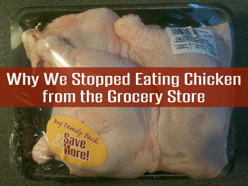 Why We Stopped Eating Chicken from the Grocery Store