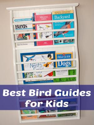 Best Bird Guides for Kids