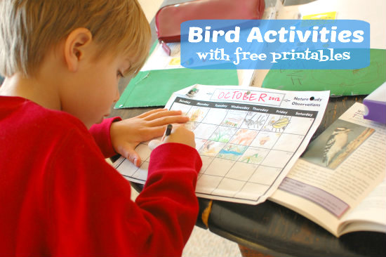 Exploring Nature with Kids: Favorite Bird Activities {free printables}