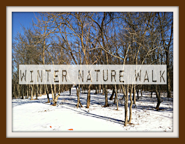 Exploring Nature With Kids: Winter Nature Walk {Getting Started}