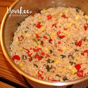 Sneaky Veggies: Colorful Rice | Yankeehomestead.com