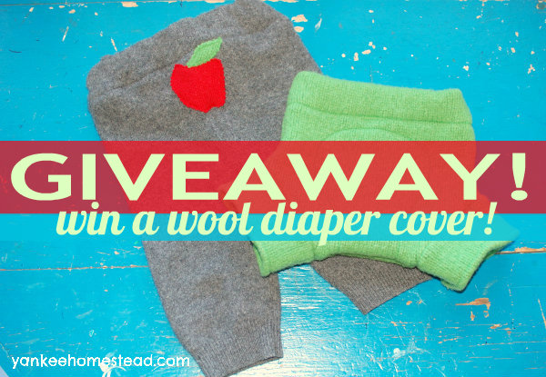 Baby Giveaway: Win a Wool Diaper Cover | Yankeehomestead.com