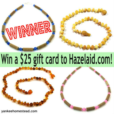 Winner of the Hazelaid Giveaway