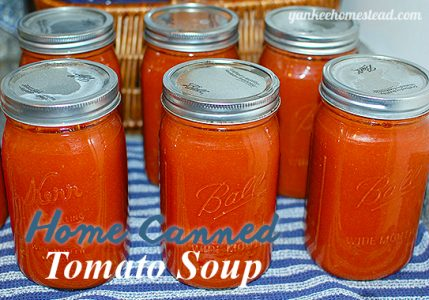 Home Canned Tomato Soup | Yankee Homestead