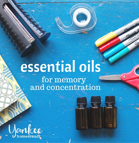 Essential Oils for Memory and Concentration