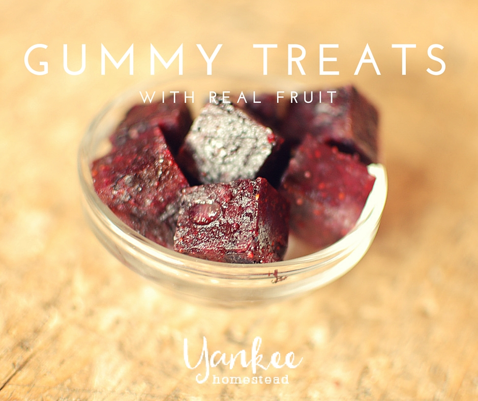 Homemade Gummy Treats with Real Fruit
