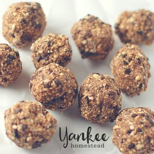 Gluten Free Cookie Dough Bites | Yankee Homestead