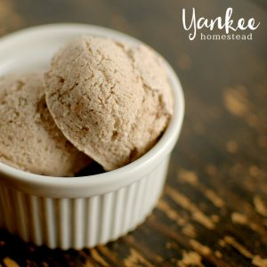 Dairy Free Ice Cream: Mint Chocolate Chip | Yankee Homestead