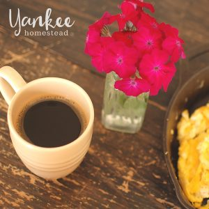 Dandelion Root Coffee | Yankee Homestead