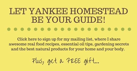 LET YANKEE HOMESTEAD BE YOUR GUIDE!
