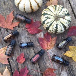 16 Cozy Fall Diffuser Blends | Roots & Boots
