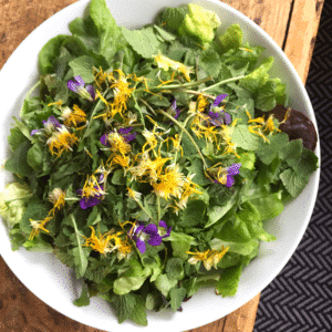 Foraged Salad Greens From Your Own Backyard | Roots & Boots