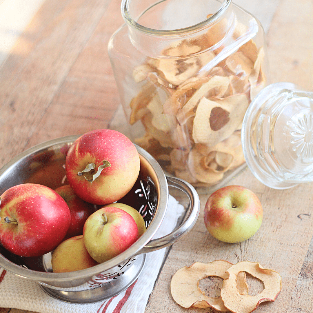 Easy Homemade Apple Chips | Yankee Homestead