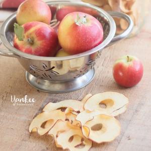 Easy Homemade Apple Chips | Yankee Homestead