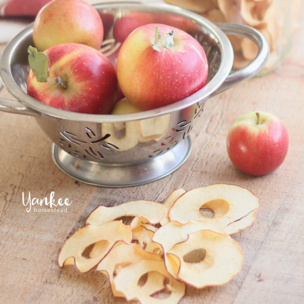 Easy Homemade Apple Chips