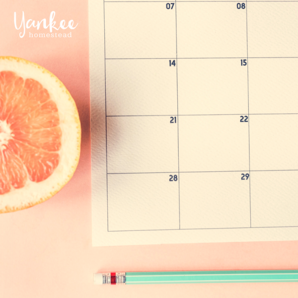 My Quest For The Perfect Monthly Planner