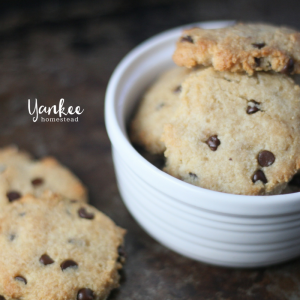 Egg-Free Paleo Chocolate Chip Cookies | Yankee Homestead