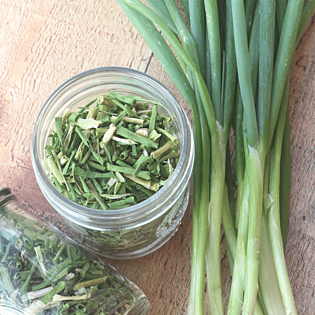 How To Dry Green Onions | Roots & Boots
