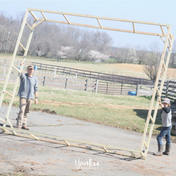 How to Raise Pastured Poultry, Part 2: DIY Chicken Tractor