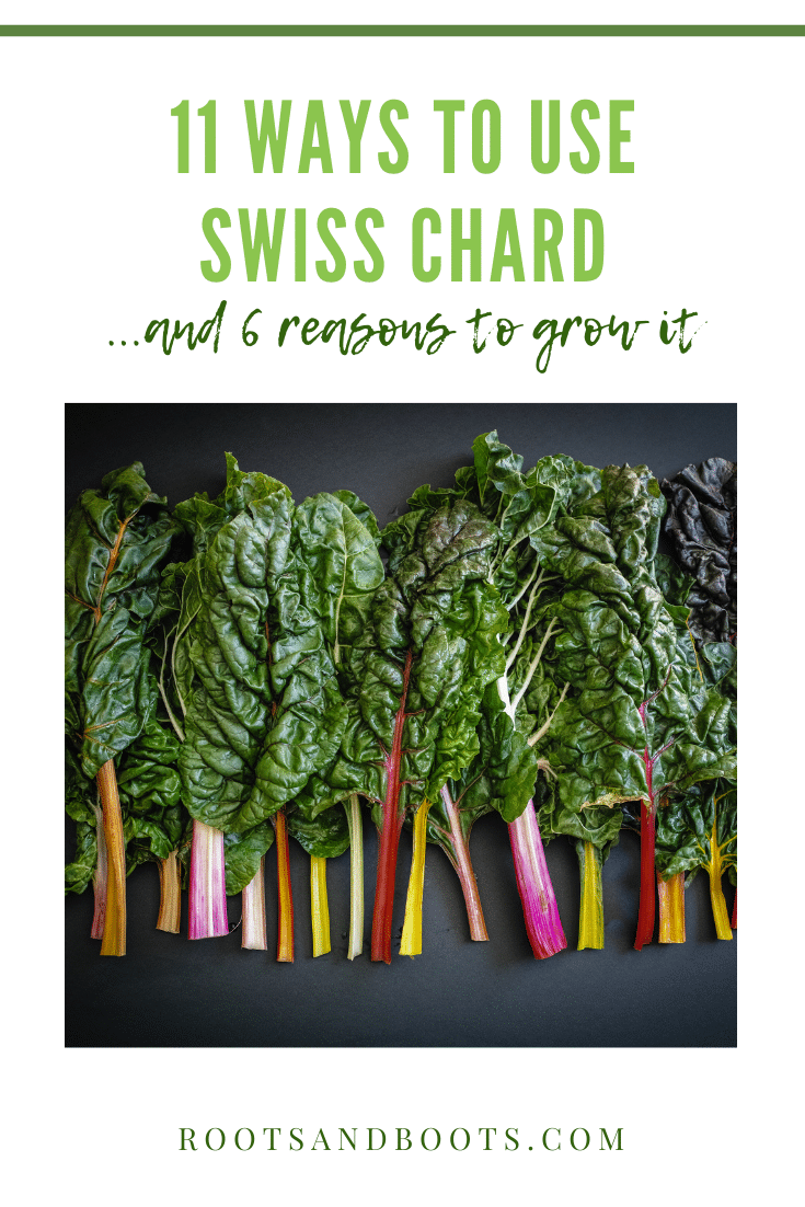 11 Ways to Use Swiss Chard | Roots & Boots