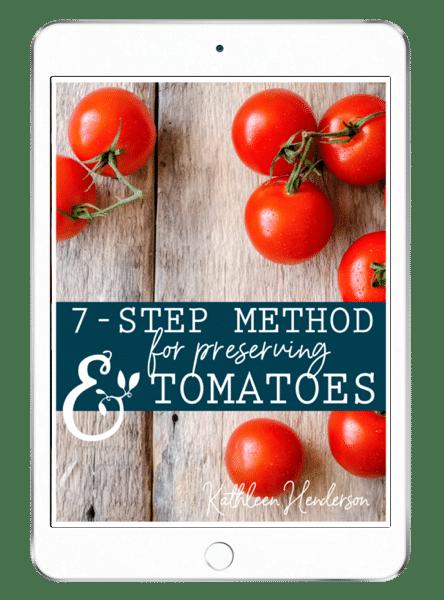 tomato-ipad (1)