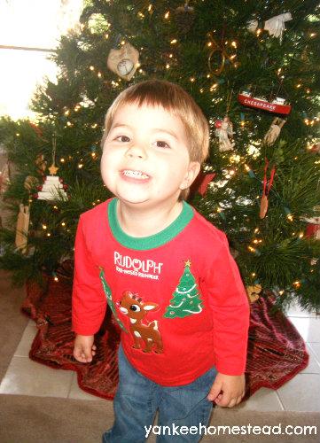 The Christmas Tree Evolves   Yankeehomestead.com