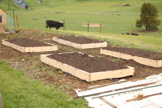 Square Foot Gardening--4 Raised Boxes