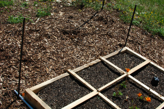 Square Foot Gardening--Rebar