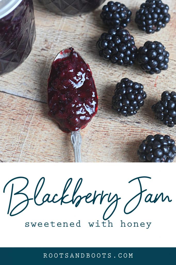 Honey Sweetened Blackberry Jam | Roots & Boots