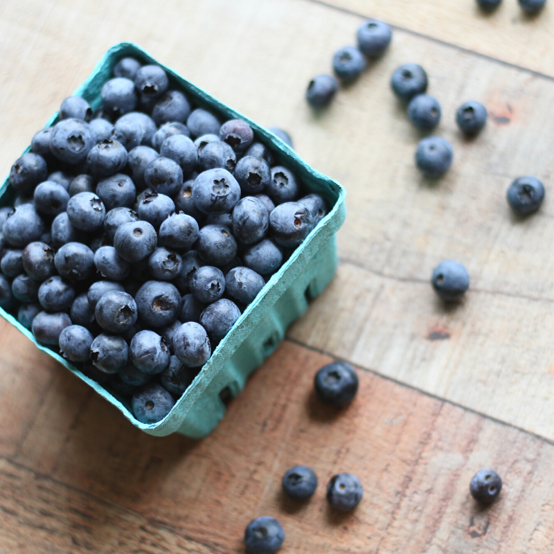 25 Paleo Blueberry Recipes