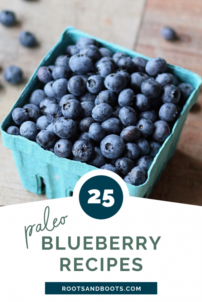 25 Paleo Blueberry Recipes | Roots & Boots