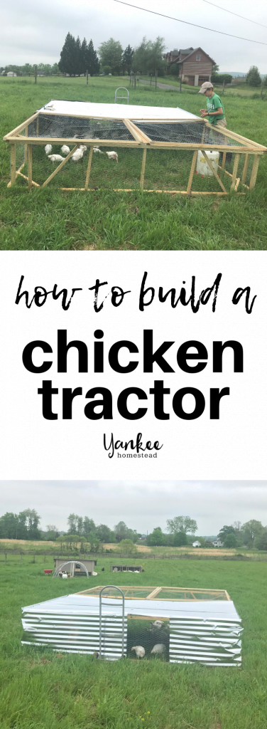 How to Build A Chicken Tractor | Yankee Homestead