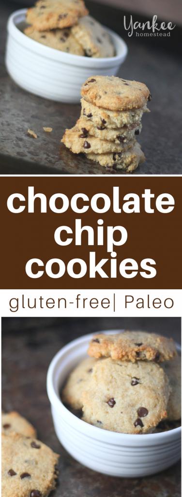 Egg-Free Paleo Chocolate Chip Cookies | Yankee Homestead