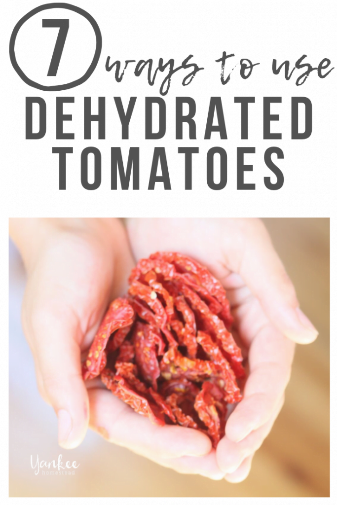 7 Ways to Use Dehydrated Tomatoes | Yankee Homestead