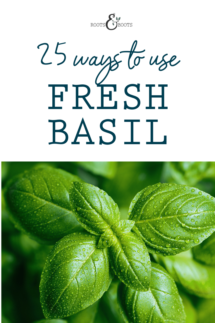 25 Ways to Use Fresh Basil | Roots & Boots