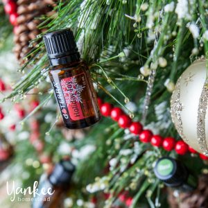 Free Printable List of 40 Holiday Diffuser Blends