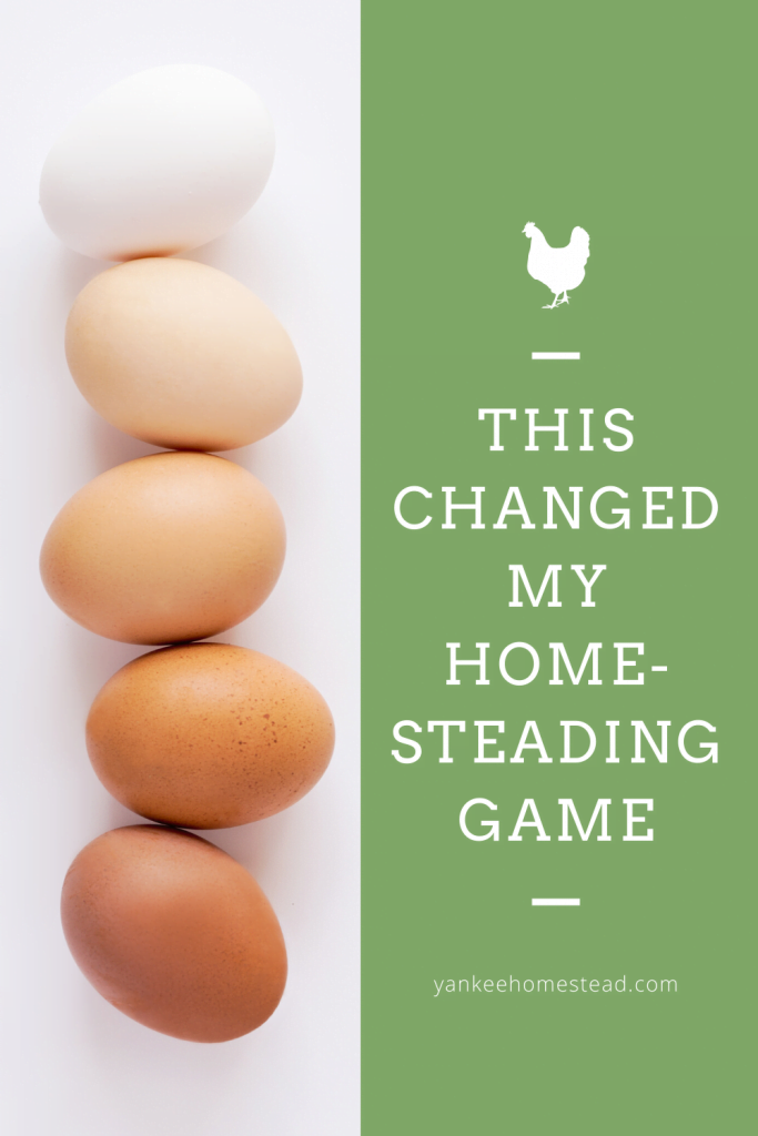 This Changed My Homesteading Game | Yankee Homestead