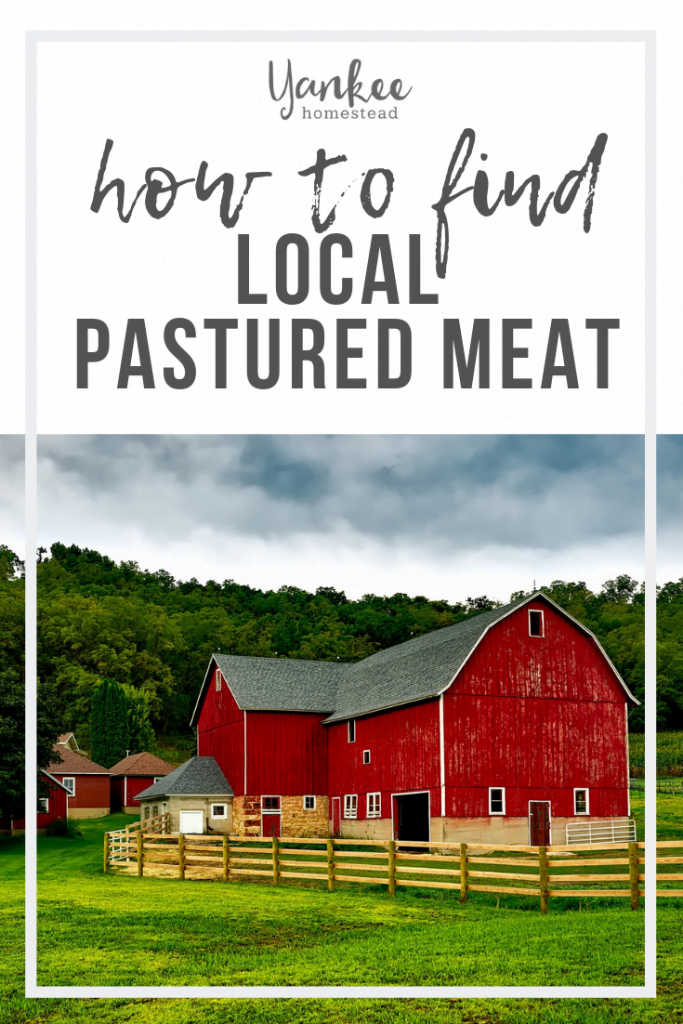 How to Find Local Pastured Meat | Yankee Homestead