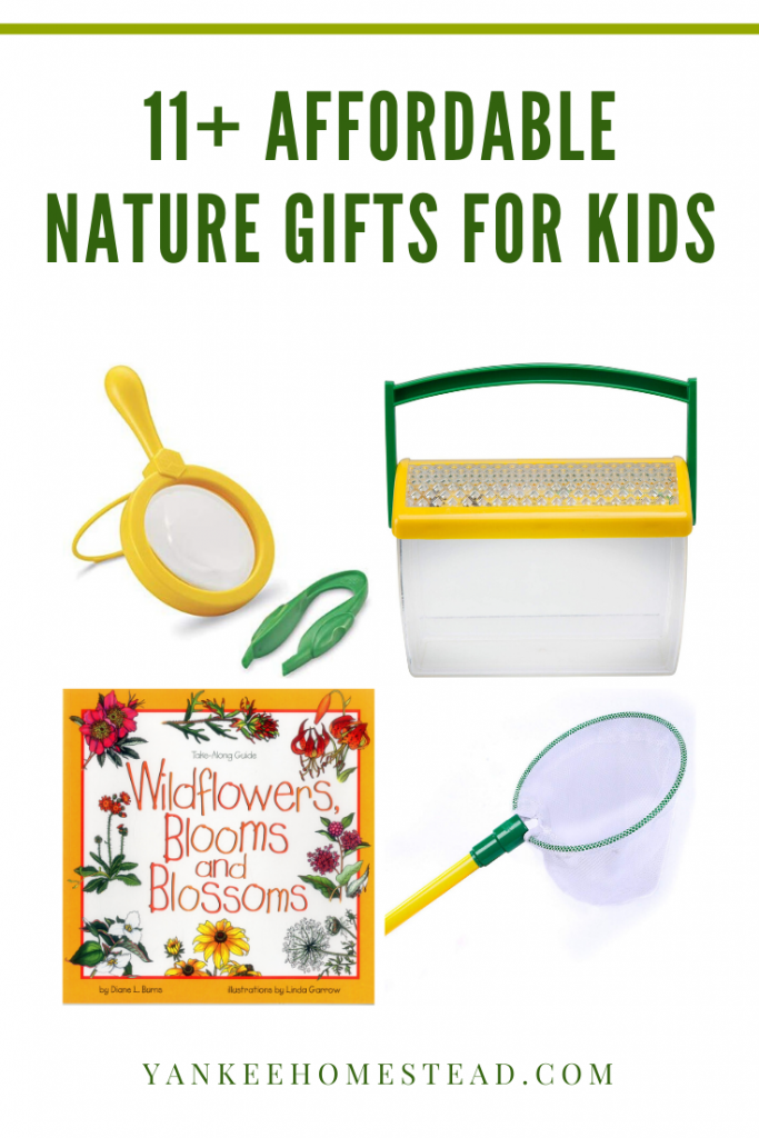 11 Affordable Nature Gifts for Kids | Yankee Homestead