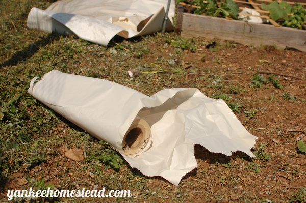 3 Affordable Walkway Materials for the Vegetable Garden | Yankee Homestead